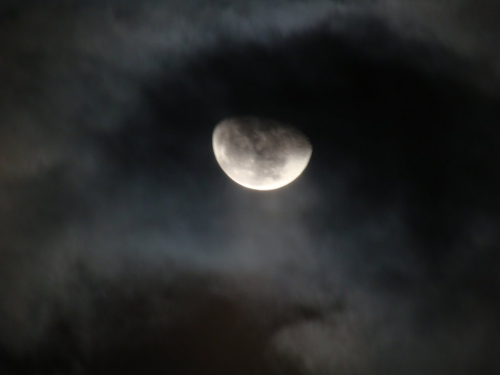 月明かりの夜空 月明かりの空の雲と月 月夜に写し月と雲のコラボの写真壁紙 樹木の四季